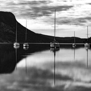 Harmonious Reflections