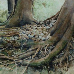 Rocky Nest